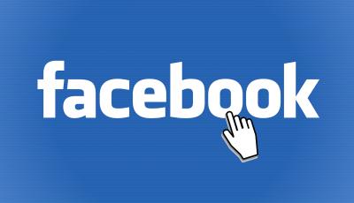 facebook hurtownia zoologiczna
