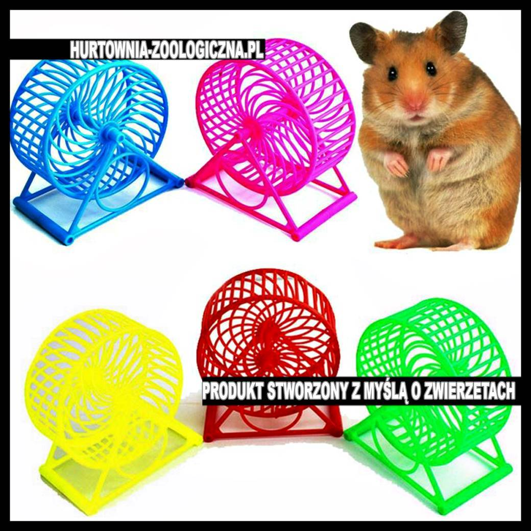 Kołowrotek plastikowy dla chomika lub myszki
