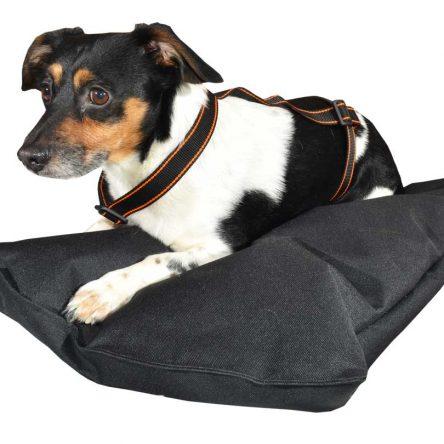 Szelki dla psa M-XXL czarne z pomarańczowym paskiem