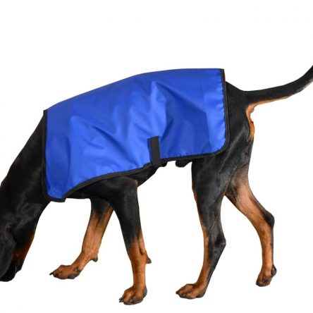 Przeciwdeszczowy płaszcz dla psa