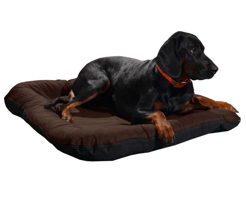 Legowisko ponton wodoodporny dla psa czarny spód
