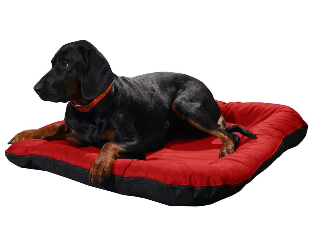 RECENZJA: Legowisko ponton wodoodporny dla psa czarny spód – Ametyst