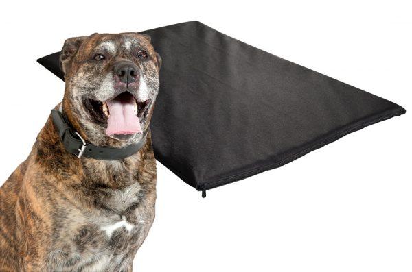 Mata dla psa wodoodporna z gąbką