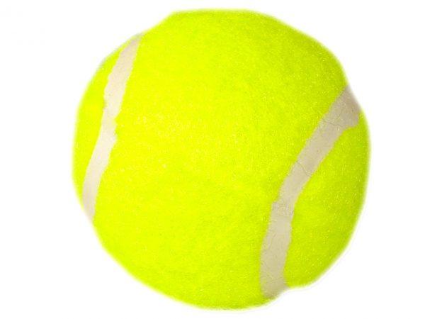 Zabawka tenisowa piłka dla psa klasyczna