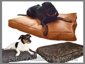 Łóżka dla psów