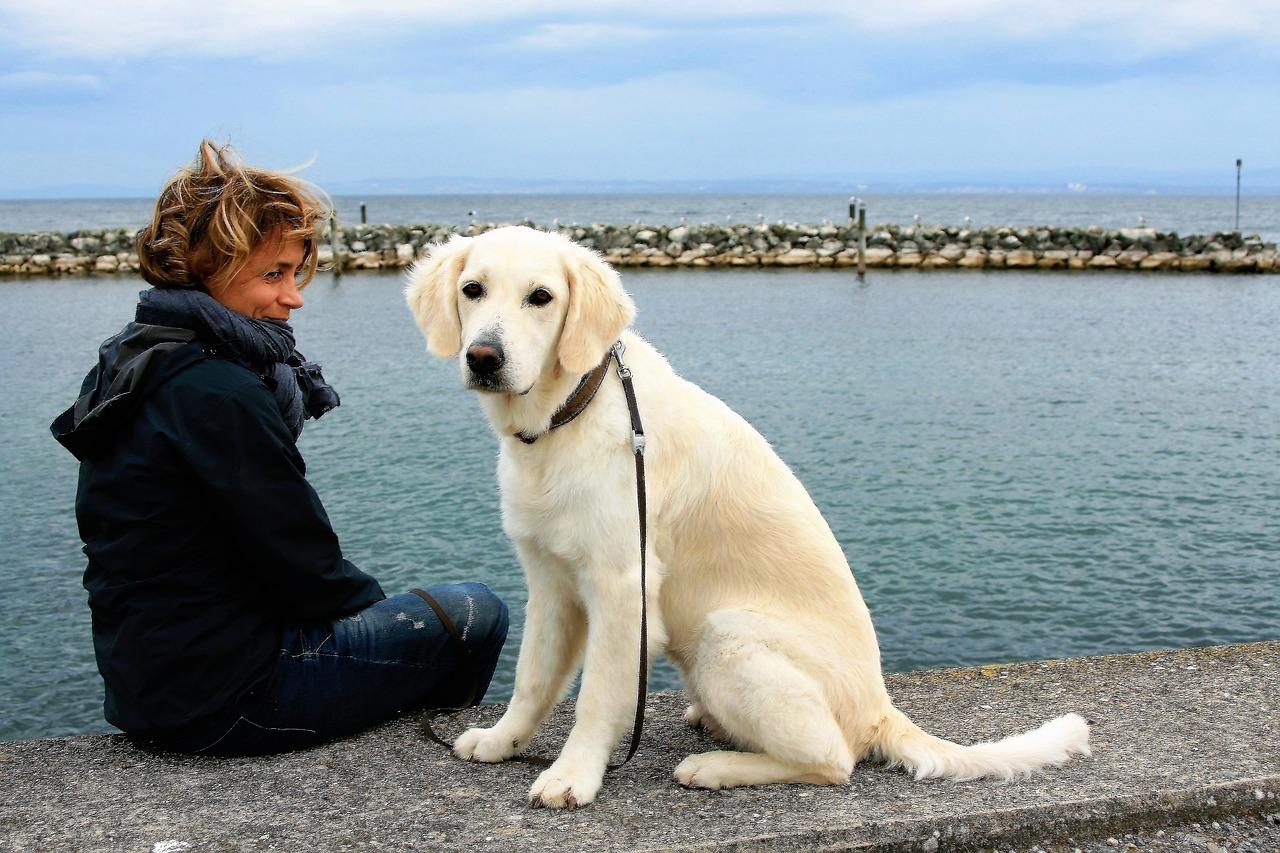 Co należy zabrać na spacer z psem?