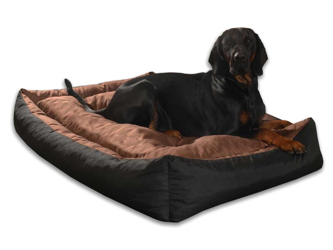 Kanapy dla psów