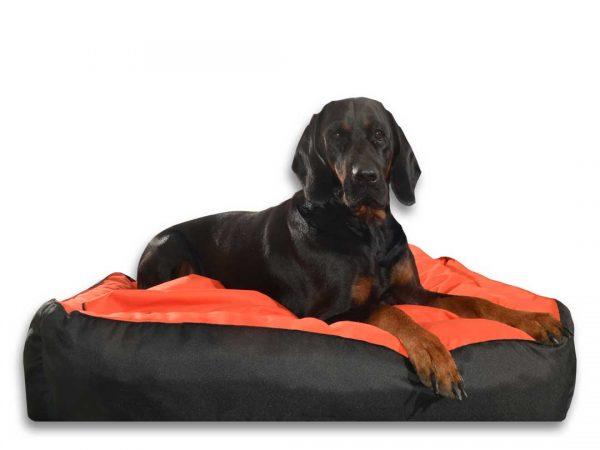Legowisko dla psa kanapa dwukolorowa duża