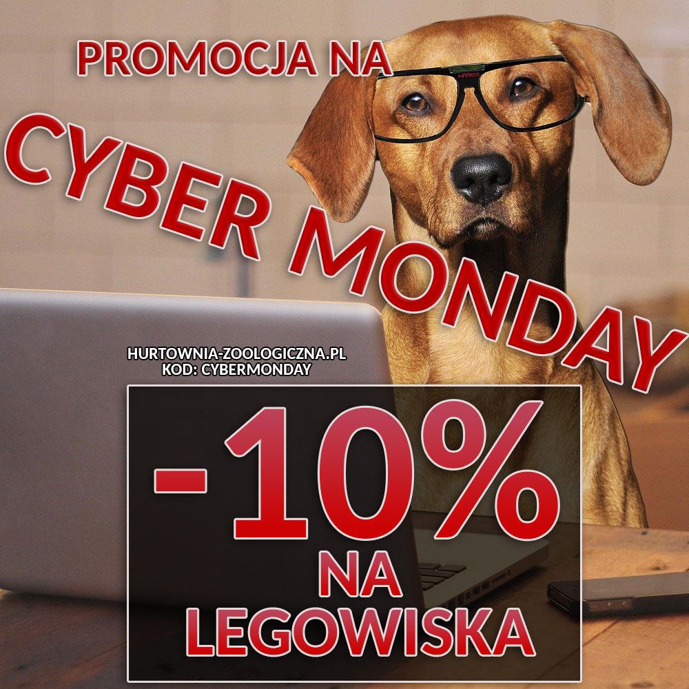 cyber monday - promocja w Hurtowni Zoologicznej Halper