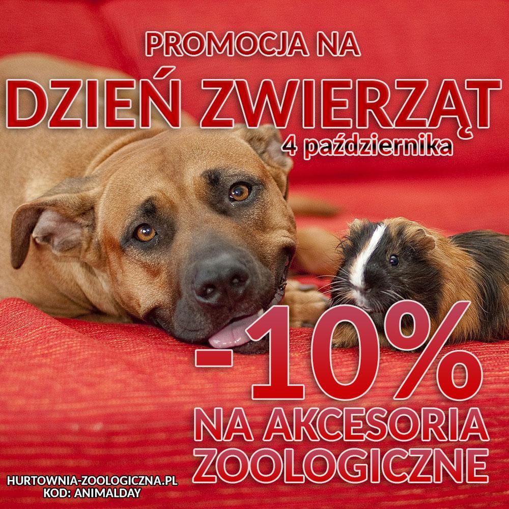 dzień zwierząt - promocja w Hurtowni Zoologicznej Halper